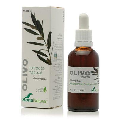 extracto de olivo